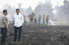 Riau Dipenuhi Kabut Asap, BPPT Siapkan Teknologi Kapur Tohor, Apa Itu?