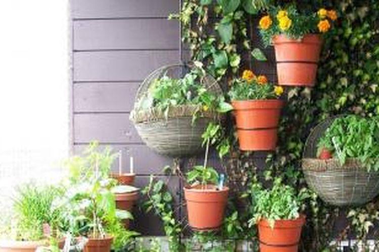 Anda bisa menempatkan tanaman di berbagai tempat di taman, misalnya dengan cara menggantung. Cara ini efektif untuk menambah ruang di teras Anda dan menjadi daya tarik tersendiri.