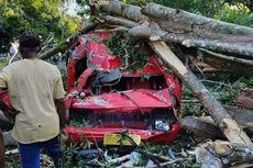 Mobil Angkot Rusak Berat Tertimpa Pohon, Sopir dan Penumpang Selamat