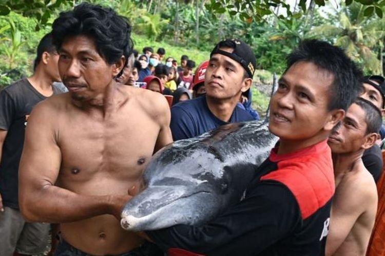 Kejadian demi kejadian lumba-lumba terdampar di pantai dilaporkan warga di berbagai daerah dalam delapan tahun terakhir. Foto ini merupakan upaya warga menyelamatkan lumba-lumba yang tersesat di Luwu, Sulsel-Februari 2021