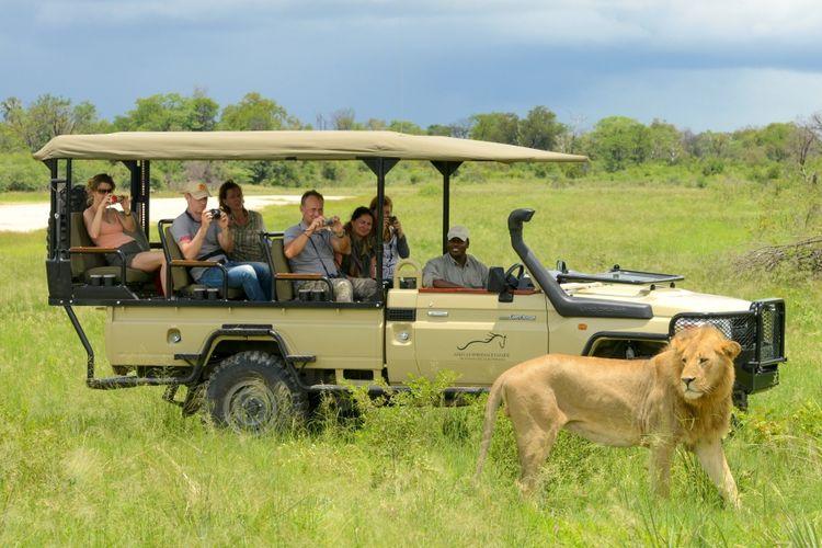 Ilustrasi Botswana - Para wisatawan sedang melakukan kegiatan safari di Okavango Delta, Botswana.