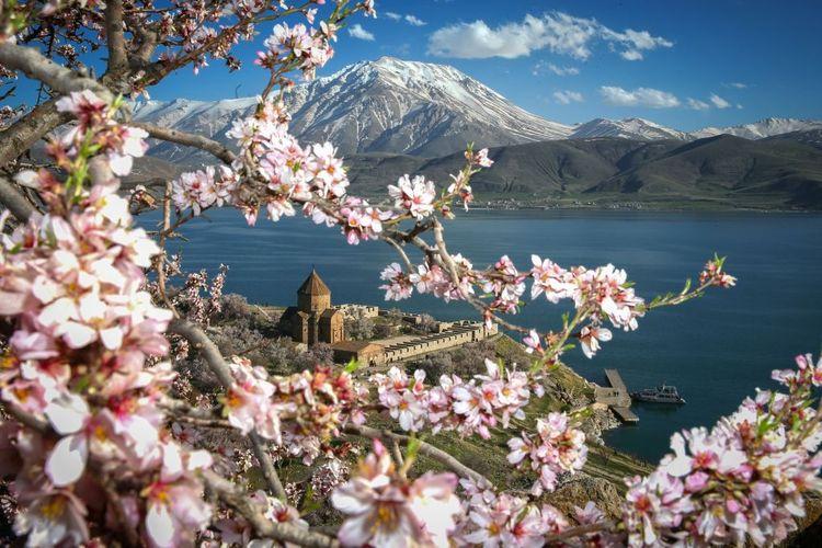 Gereja Akdamar di Danau Van saat musim semi di Turki.