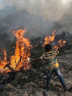 Seorang bocah beursaha memadamkan kebakaran lahan dengan alat seadanya di Desa Kayu Arehh, Kertapati Palembang, Sumatera Selatan, Minggu, (18/8/2019). Sebanyak enam helikopter  water boombing dan 1.512 orang personel gabungan dari TNI, Polri, Manggala Agni, BPBD dan Sat Pol PP dikerahkan untung melakukan pemadaman Kebakaran Hutan dan Lahan (Karhutla) di Provinsi Sumatera Selatan. ANTARA FOTO / Mushaful Imam/Lmo/hp.