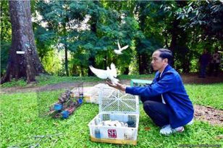 Presiden Joko Widodo (Jokowi) melepaskan burung yang dibeli dari Pasar Pramuka di Kebun Raya Bogor, Minggu (3/1/2016).