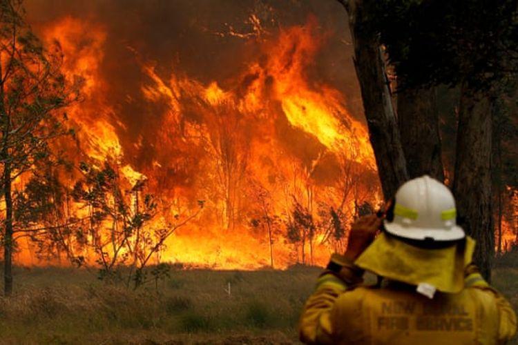 Kebakaran lahan di New South Wales, Australia.