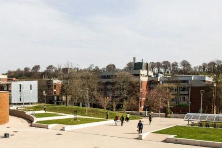 University of Sussex, Brighton, Inggris