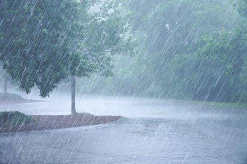 [POPULER SAINS] Muncul Bibit Siklon Tropis, Ini Prakiraan Cuaca Sepekan ke Depan | 5 Pengganti Susu Sapi