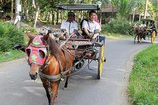 Selain Perayaan Waisak di Borobudur, Intip Juga Wisata Unik Ini...