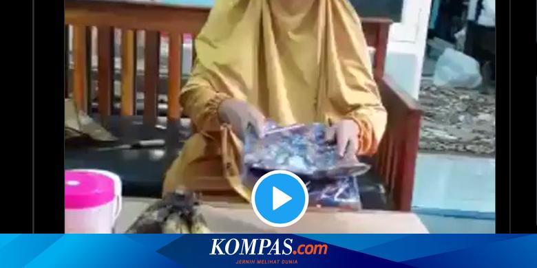 Video Viral Pembeli Maki Kurir Ketika COD, YLKI: Literasi Digital Rendah Halaman all thumbnail