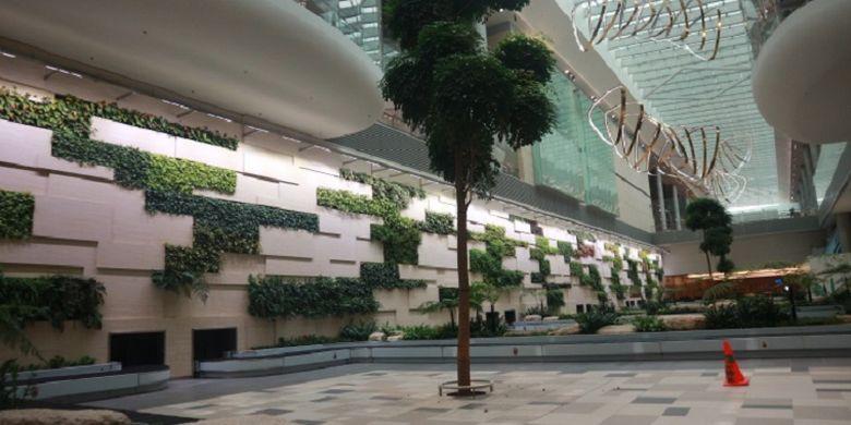 Area kedatangan di Terminal 4 Bandara Changi, Singapura, Selasa (25/7/2017). Di area ini, penumpang bisa mengambil bagasi dan menikmati pemandangan seperti tanaman-tanaman hidup dan instalasi Petalclouds.