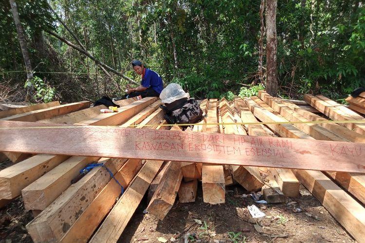 Belasan kubik kayu tak bertuan ditemukan di lintasan gajah sumatera di Bengkulu
