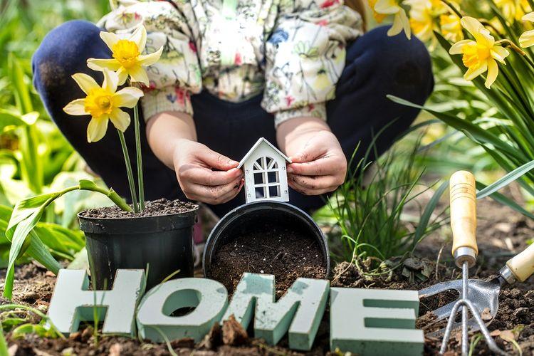 Ilustasi kegiatan berkebun bersama anak di rumah.
