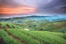 251 Desa Wisata Jabar Dikembangkan Secara Bertahap, Targetnya Mendunia
