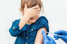 Mengapa Vaksinasi Berkaitan dengan Sistem Kekebalan Tubuh Manusia?