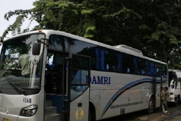 Ilustrasi bus Damri