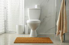 4 Cara Mudah Mengatasi WC Mampet