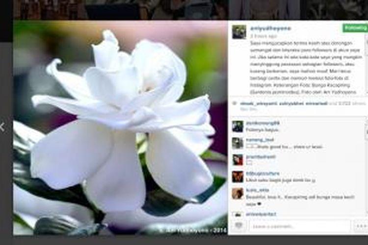 Ibu Negara Ani Yudhoyono kembali mengunggah foto di akun Istagram-nya, @aniyudhoyono, Rabu (22/1/2014). Namun, kali ini Ani menyertakan komentar permintaan maaf kepada para followers-nya.