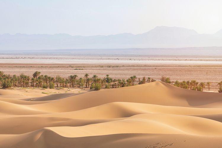 Pemandangan Gurun Lut atau Dasht-e-Lut, adalah salah satu tempat terpanas di Bumi. Spesies krustasea baru ditemukan hidup di danau air tawar di gurun yang berada di Iran.