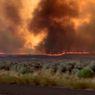 Tornado Api Lahap 20.000 Hektare Hutan di Pegunungan Sierra Nevada AS