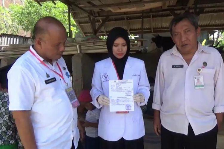 Kandang Sapi Milik Abdul Rahim Mendadak Jadi Objek Wisata Sejak Sapinya Dibeli Jokowi