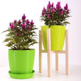 Ilustrasi tanaman hias di dalam pot.