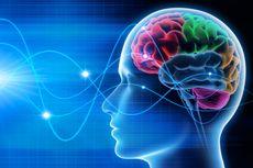 Macam-Macam Gelombang Otak dan Pengaruhnya Bagi Manusia