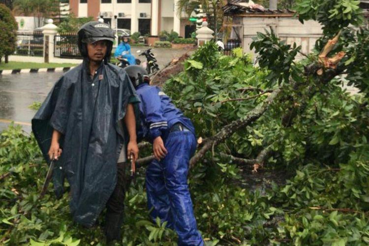 Hujan disertai angin menyebabkan pohon tumbang di jalan utama Kecamatan/Kabupaten Banyumas, Jawa Tengah, Jumat (3/1/2020) sore.