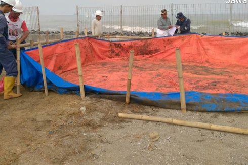 Tumpahan Minyak Mentah Kembali Muncul di Pesisir Karawang