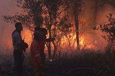 Kebakaran Hutan di Ogan Ilir, Asap Mulai Ganggu Warga