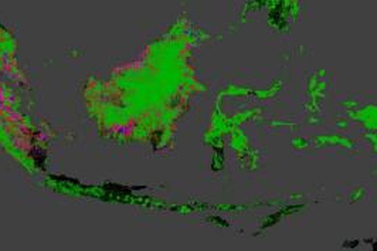 Wajah hutan Indonesia berdasarkan pemetaan Google Earth dan University of Maryland.