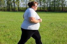 5 Organ Tubuh yang Rusak Akibat Obesitas