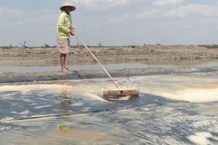 Petani garam di Desa Menco,  Kecamatan Wedung,  Kabupaten Demak,  Jateng saat memanen garamnya,  Selasa (1/8/2017)