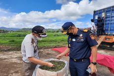 Perdana, 2 Ton Tanaman Stevia dari Sulut Diekspor ke Korea Selatan
