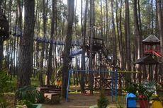 Hutan Pinus Samparona di Baubau Buka Lagi, Terapkan Protokol Kesehatan