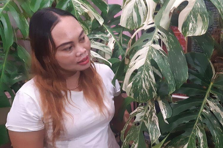 Sri Hastuti, warga Kragilan, Banjarsari, Solo pemilik Monstera variegata seharga Rp 225 juta.