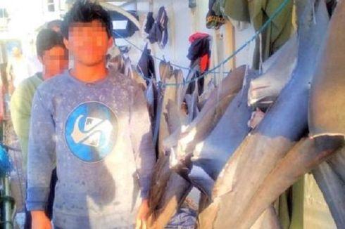 Kasus ABK Indonesia, Bagaimana Mengatasi Perbudakan di Kapal Asing?