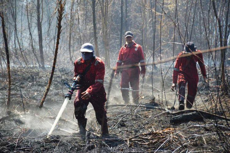 Tim BBKSDA Riau memadamkan titik api karhutla di kawasan Cagar Biosfer Giam Siak di Kabupaten Bengkalis, Provinsi Riau, Rabu (3/3/2021).