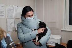 Hampir Masuk Mesin Pencacah Sampah, Kucing Ini Diselamatkan dan Diangkat Jadi