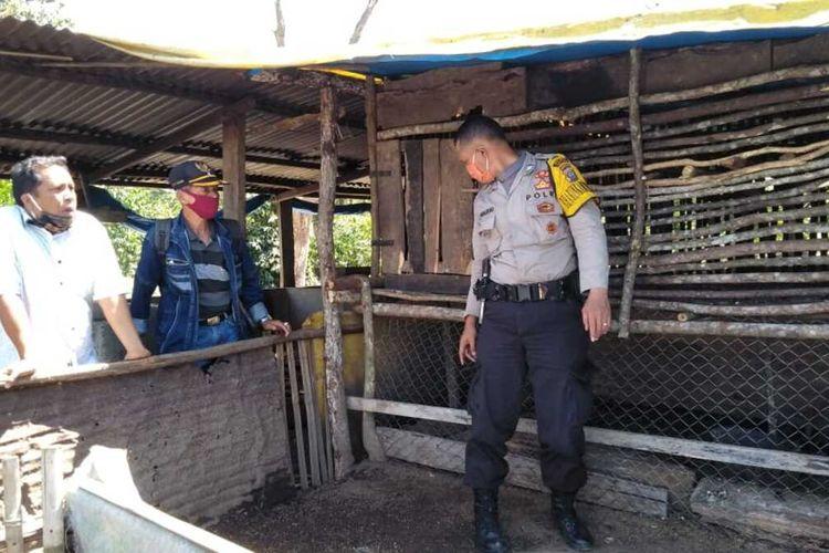 Personel Polisi, unsur Desa dan Kecamatan melihat kondisi tempat ternak milik warga yang dinyatakan mati secara misterius di Dusun Pargompulon, Desa Tonga Pohan, Siborongborong, Tapanuli Utara, Jumat (19/6/2020).