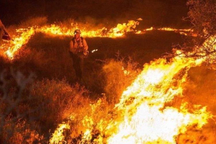 Sebanyak 6 orang diyakini masih terjebak di dalam hutan yang terbakar. (BBC)