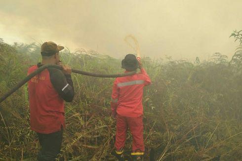 Titik Api Karhutla Riau Makin Banyak, Luas Kebakaran Sampai 20 Hektar