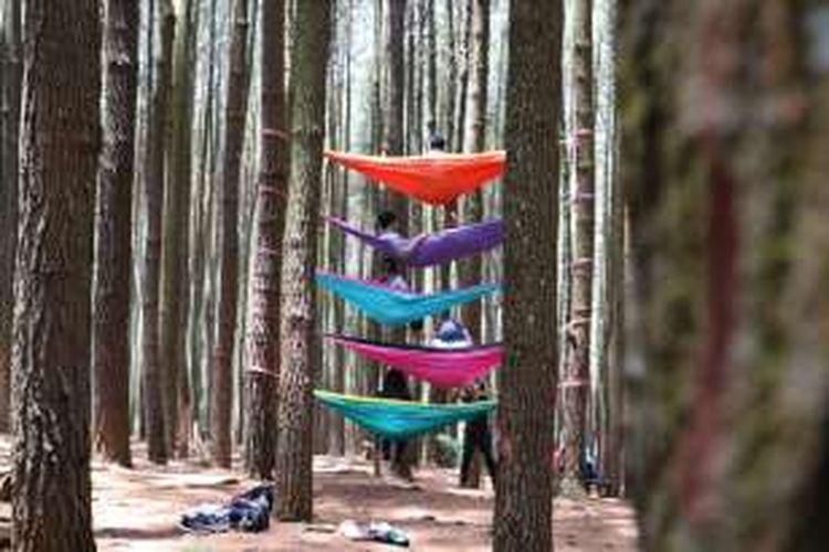 Hutan Pinus Mangunan terletak di Desa Dlingo, Mangunan, Kabupaten Bantul, DI Yogyakarta.