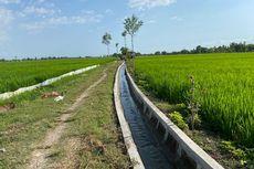 Mentan SYL: Irigasi Jadi Solusi untuk Tingkatkan Produktivitas Pertanian di Lampung
