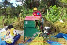 Pertama dalam 60 Tahun, Dusun Saluseba di Luwu Utara Mandiri Pangan