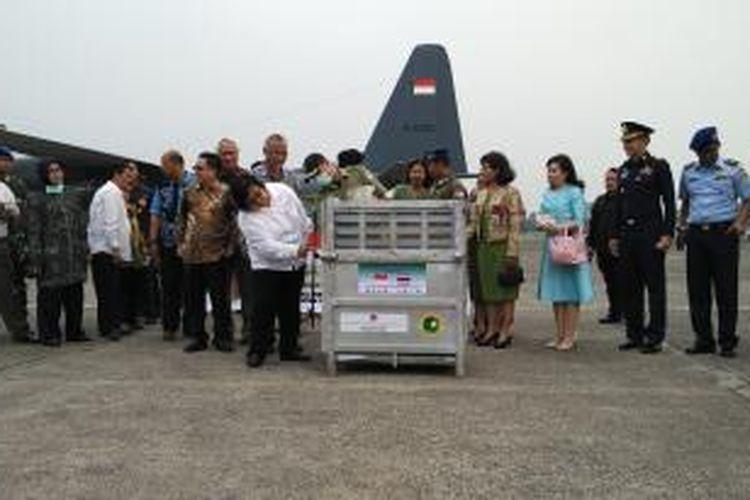 Menteri Lingkungan Hidup dan Kehutanan, Siti Nurbaya, menyambut salh satu dari 14 orangutan kembali ke Indonesia.