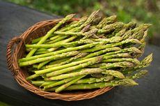 Apa Itu Asparagus? Biasa Dimasak Jadi Sup Krim
