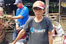 Pandemi Covid-19, Stok Hewan Kurban di Pasar Rawa Badak Sama seperti Tahun Lalu