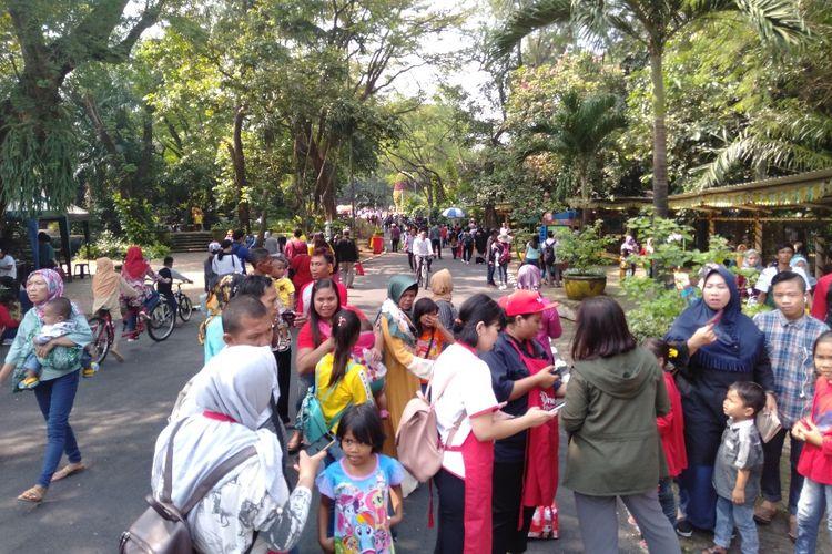 Pengunjung memadati Taman Margasatwa Ragunan, Kamis (6/6/2019).