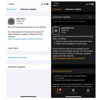 update iOS 14.0.1