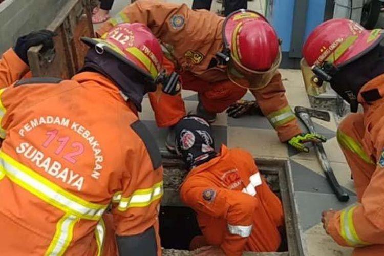 Sejumlah petugas pemadam kebakaran (Damkar) Kota Surabaya menyelamatkan seekor anak kucing terjebak saluran air di kawasan Balai Pemuda Surabaya, Jumat sore (10/9/2021).